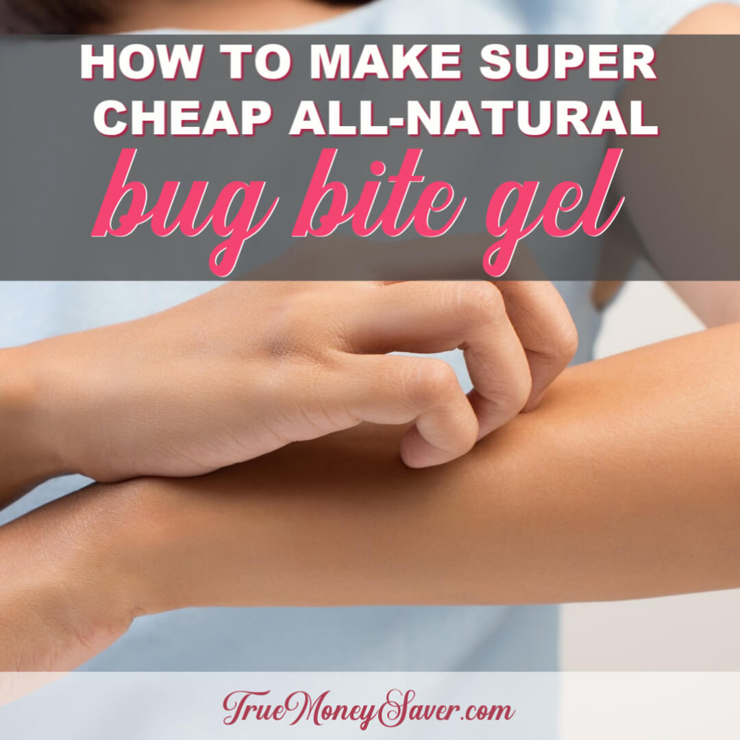 How To Make Super Cheap All-Natural Bug Bite Gel