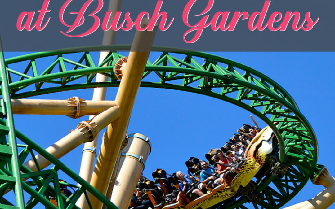 How To Save BIG At Busch Gardens